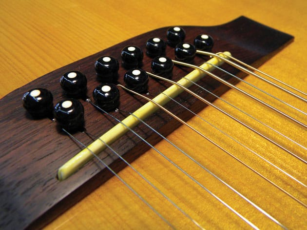 12-String Guitar: From the Street to the Stage